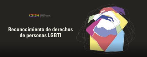 Aportes del MPD en el Informe de la CIDH sobre derechos de las personas LGBTI en Latinoamérica